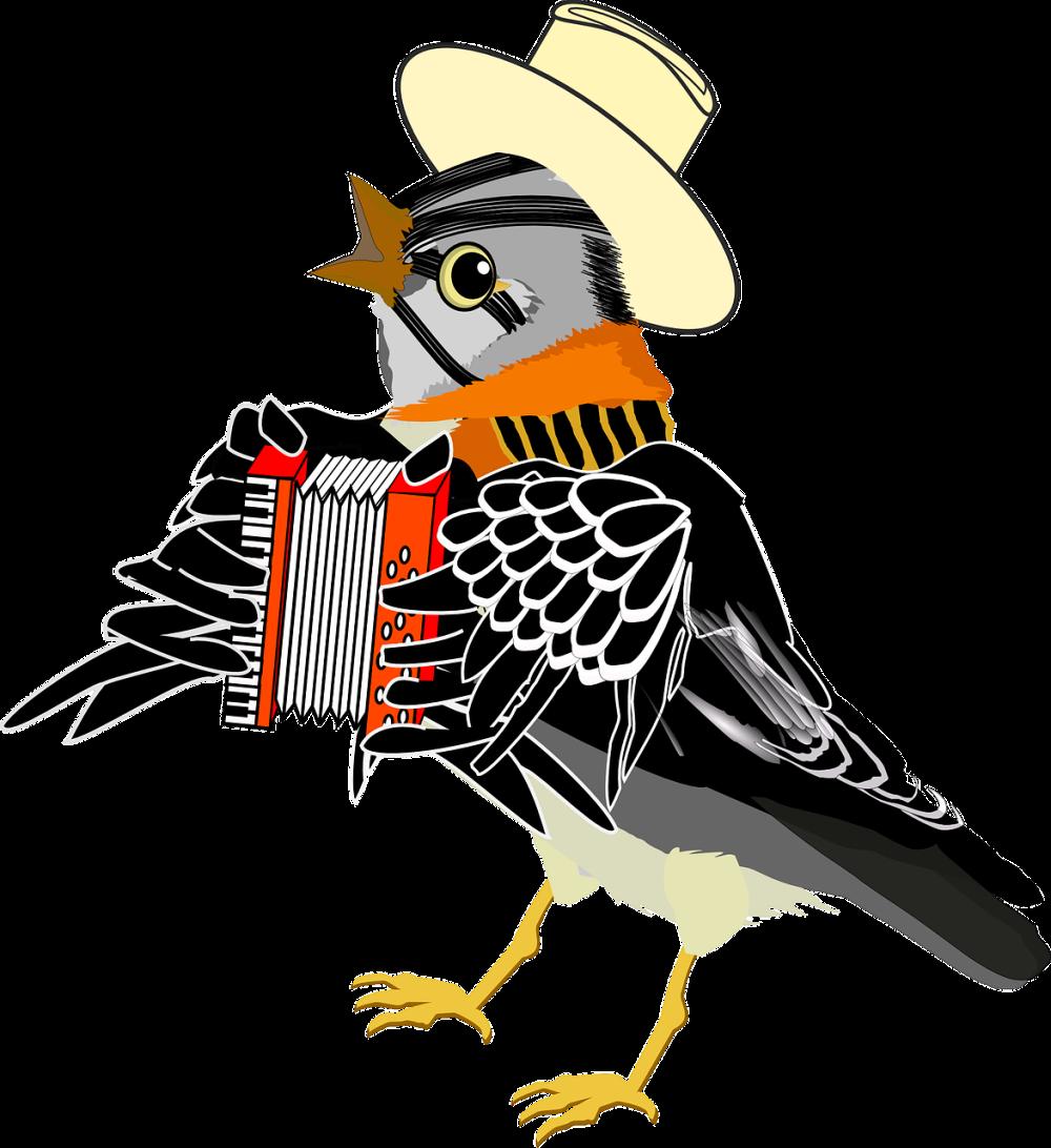 sparrow-158178_1280